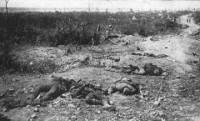 Nêu nổi bật trong giai đoạn thứ hai của cuộc chiến tranh là gì ?Vì sao Mĩ tham gia chiến tranh muộn ?