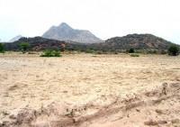 Đất feralit có đặc tính gì và ảnh hưởng như thế nào đến việc sử dụng đất trong trồng trọt.