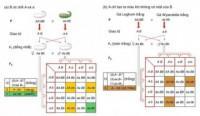 Bài 1, 2, 3 trang 45 SGK Sinh 12
