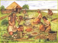 Bầy người nguyên thủy sống như thế nào ?