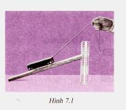 Bài C4 trang 25 sgk vật lý 6