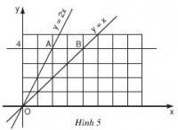 Bài 5 trang 45 sgk toán 9 tập 1