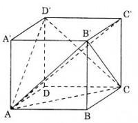Bài 3 trang 12 sgk hình học 12